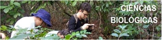 Coordenação do Curso de Licenciatura em Ciências Biológicas
