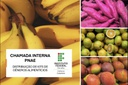 Chamada Interna PNAE - Agricultura Familiar
