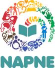 O módulo é voltado para registro de atividades realizadas pelos NAPNEs dos campi