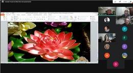 flor de lotus .jpg