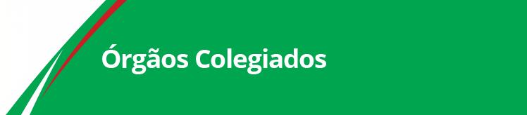Banner Órgão Colegiados