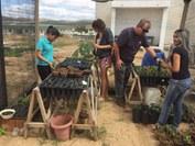Professores e alunos desenvolvem projetos de sustentabilidade e preservação ambiental junto à comunidade local