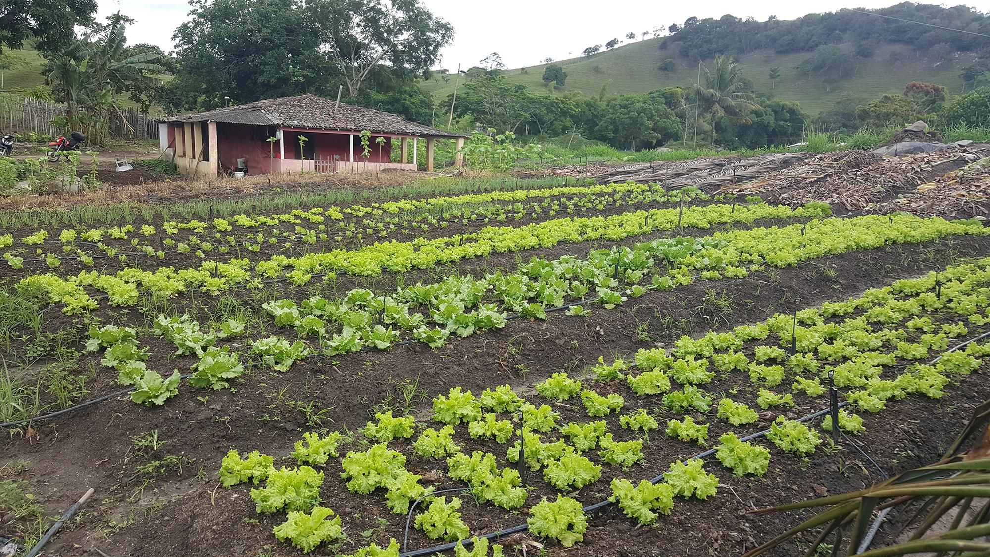 13.Turismo Rural de Base Comunitária (1).jpg