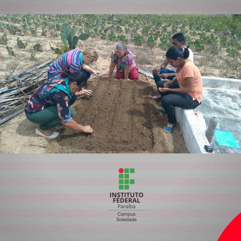 Projeto de pesquisa desenvolvido em Soledade