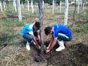 Plantio das mudas de maracujá no Setor de Fruticultura